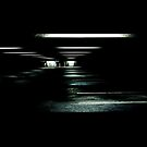 Black Hole by Alison McLean