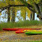 Kayaks on Wanaka foreshore by Jenny Setchell
