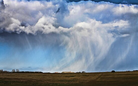 Snow shower approaching by Dave Milnes