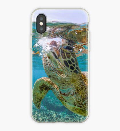 Turtle gaze iPhone Case