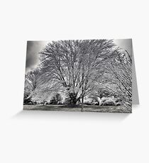 As the Cold Wind Blows... Greeting Card