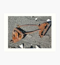 Rusty Fish Skeleton Art Print