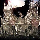 Phoenix in Ice by shutterbug2010