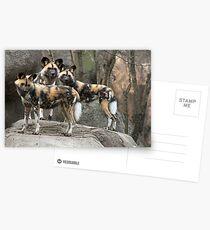 Three Amigos Postcards