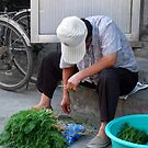 Beijing 2006 - Bundling the herbs by Marjolein Katsma