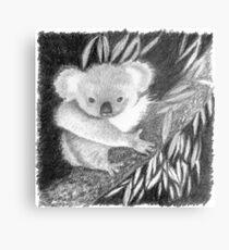 Koala at Night Pencil Sketch Metal Print
