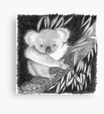 Koala at Night Pencil Sketch Canvas Print