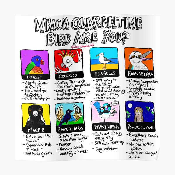 Which Quarantine Bird Are You?  Poster
