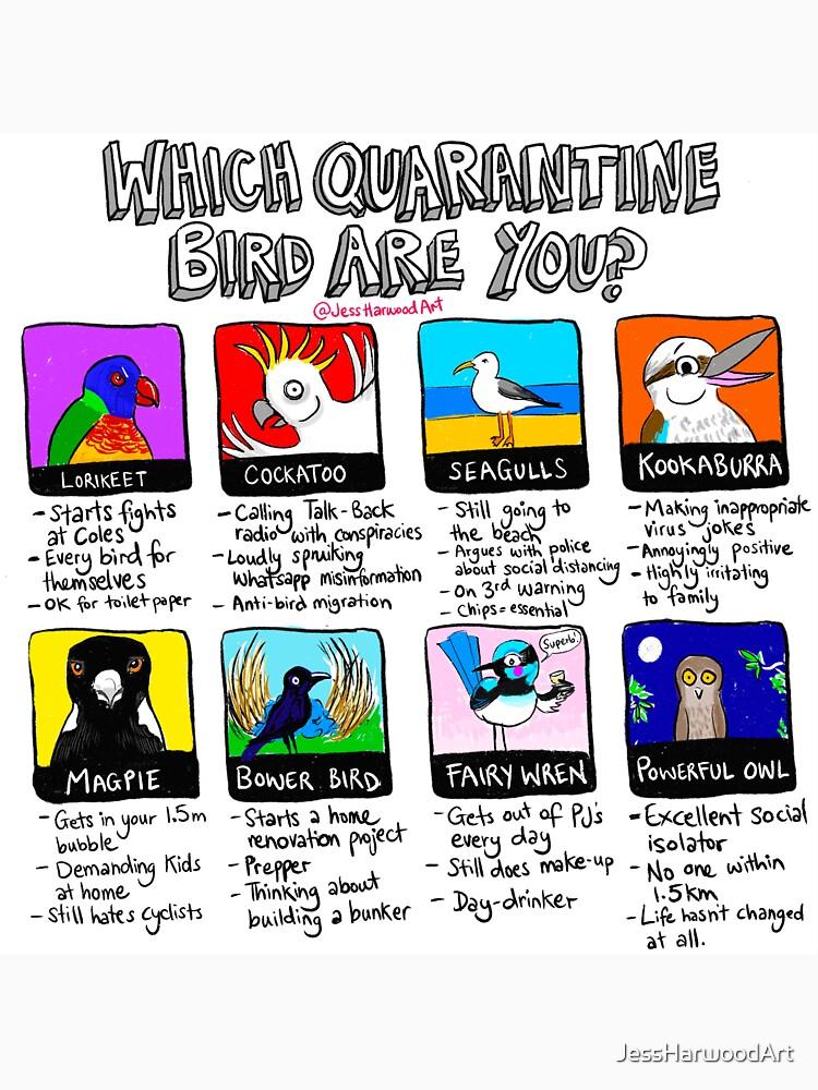 Which Quarantine Bird Are You?  by JessHarwoodArt