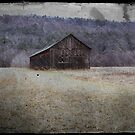Old Tobacco Barn by smalletphotos