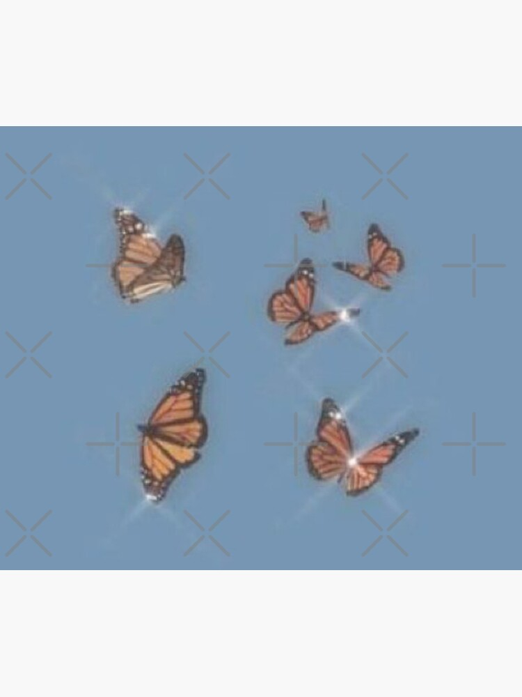 butterflies by Lovelife360