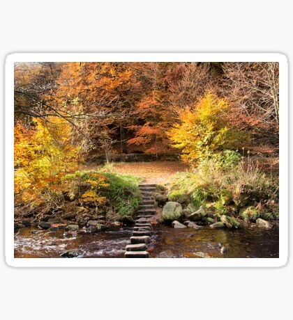Autumn Colours  Sticker