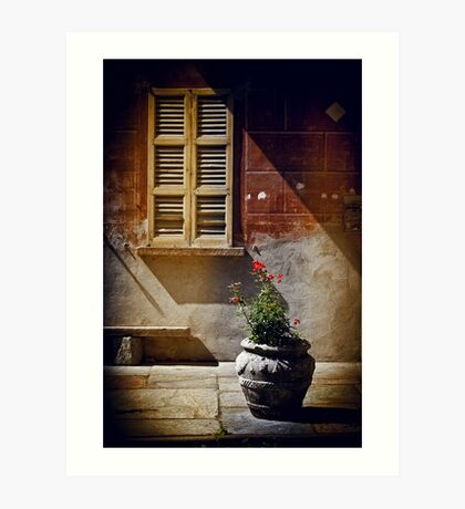 Vase, window and shadows Art Print