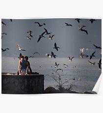 Crazy Times For Crazy Pelicans V - Tiempos Locos Con Pelicanos Locos Poster