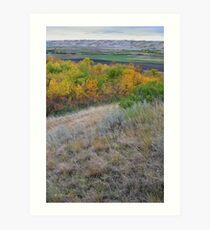 Sage Hillside Art Print