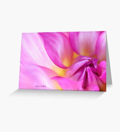 Soft Focus Dahlia Greeting Card