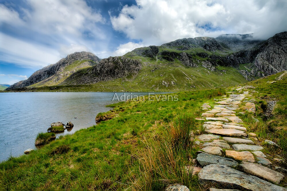 Taking the Rocky Path by Adrian Evans