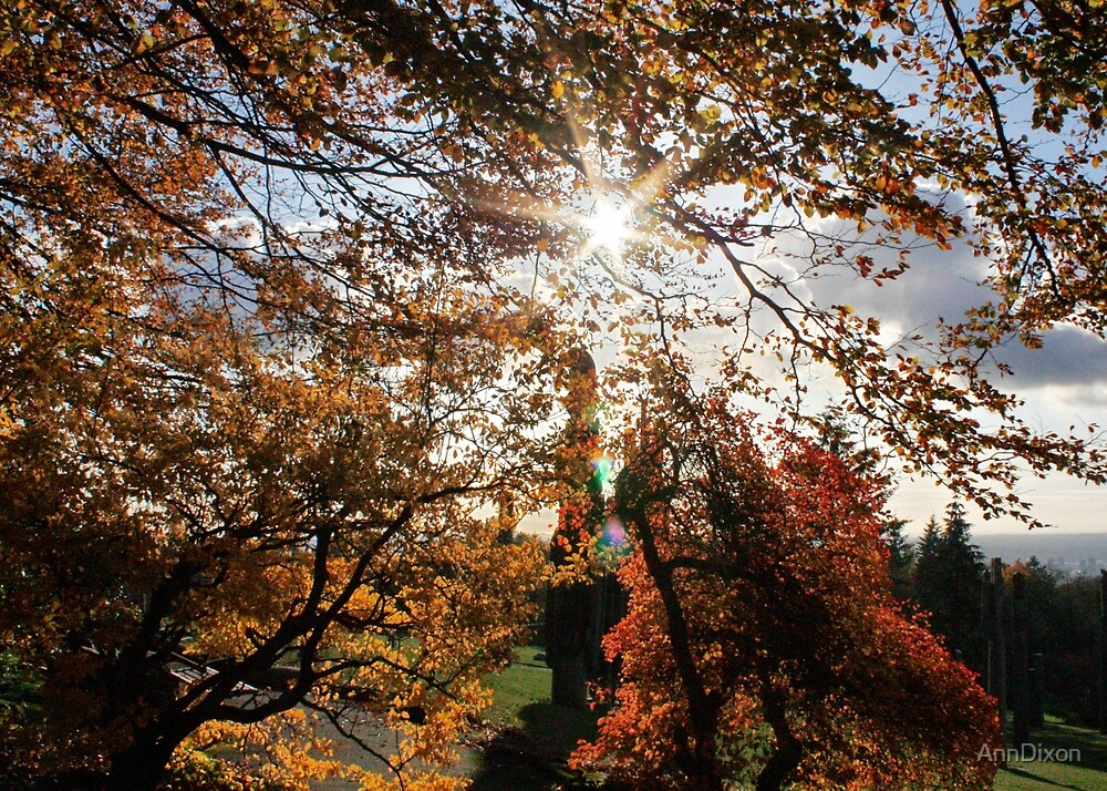 Fall in BC by AnnDixon