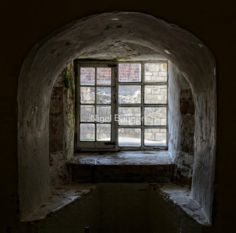Bleak View by Nigel Bangert