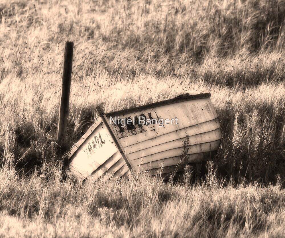 Forgotten by Nigel Bangert