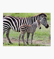 Baby Stripes  Fotodruck