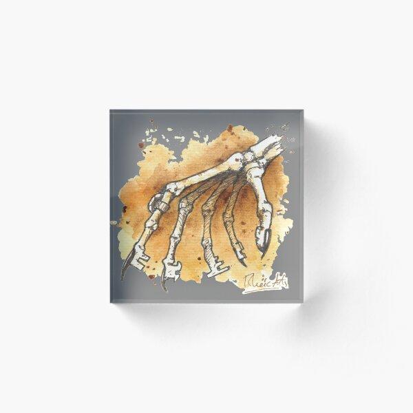 Skeleton Keys Acrylic Block