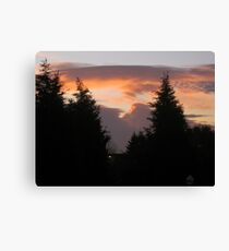 Today I woke up to a beautiful day 1 Canvas Print