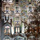 Casa Batllo by Slawomir  Piasecki