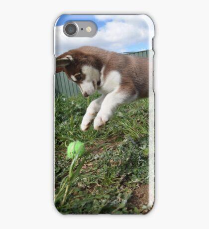 Jax-husky/malamute puppy playing  iPhone Case/Skin