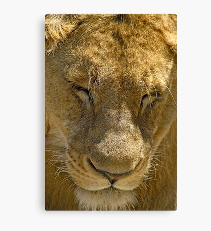 In deep thoughts Canvas Print