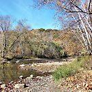 Little Beaver Creek by Monnie Ryan