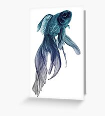 Ombre Fish Greeting Card