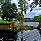 Down By The River in Conway South Carolina by Joey O'Connor