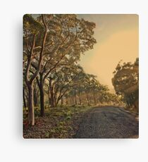 On the road to nowhere Canvas Print