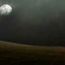 Moon over Field by Mary Ann Reilly