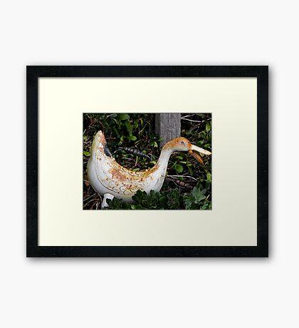 Rusty Ducky Framed Print
