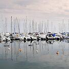 Safe Harbor by Davide Montellanico