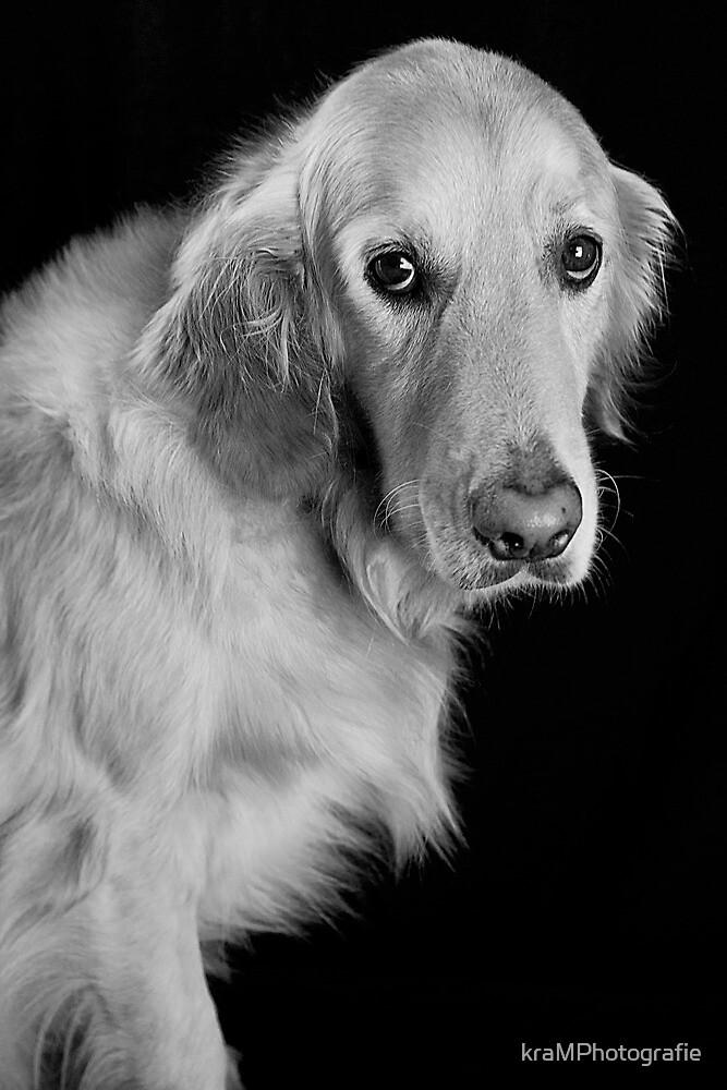 Black, White & Golden by kraMPhotografie