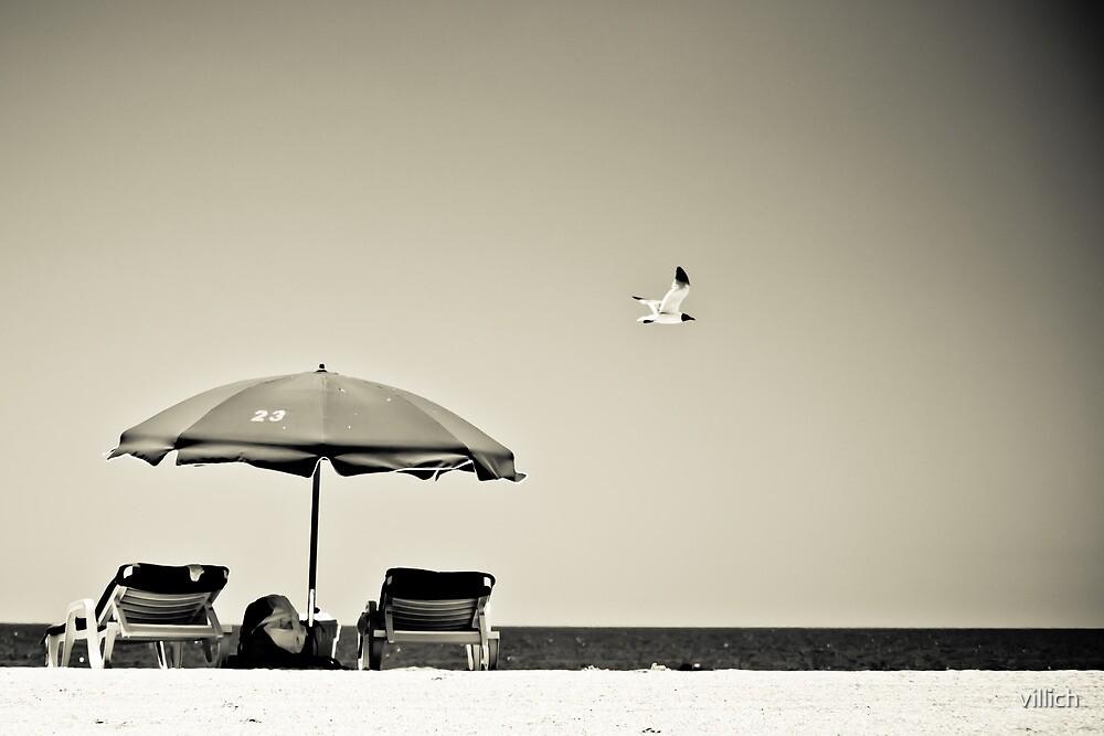 Umbrella. Seagull. Greyscale by villich