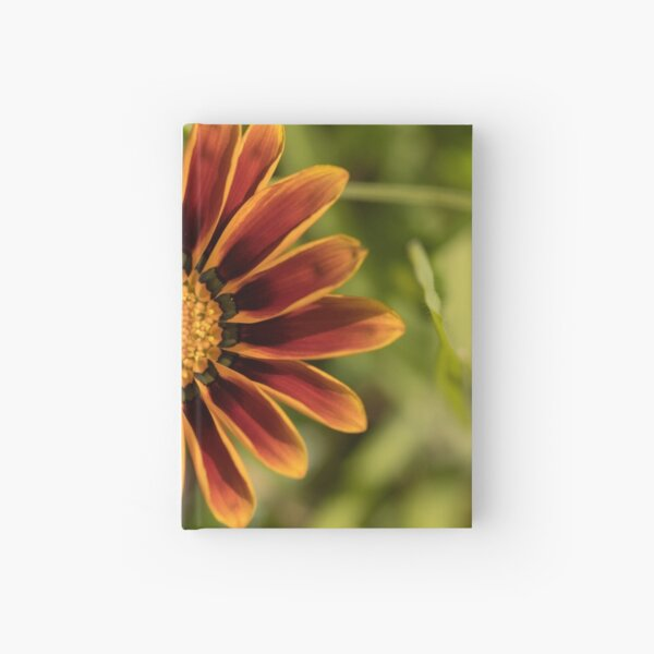 brightness from the gloom Hardcover Journal