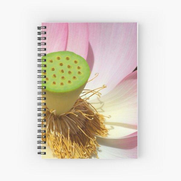 Pink Lotus Flower Photo Spiral Notebook