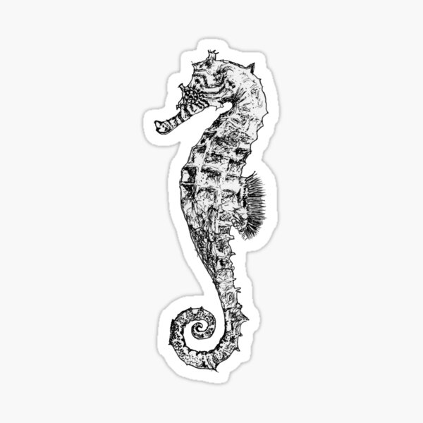Melody the Seahorse Sticker