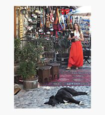 Mostar Sleeping Dog Photographic Print