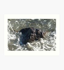 Rock on the Shore Art Print
