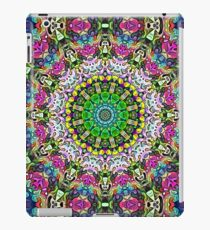 Concentric Colors Abstract iPad Case/Skin
