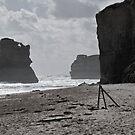 Gibsons Beach 2 by paul erwin