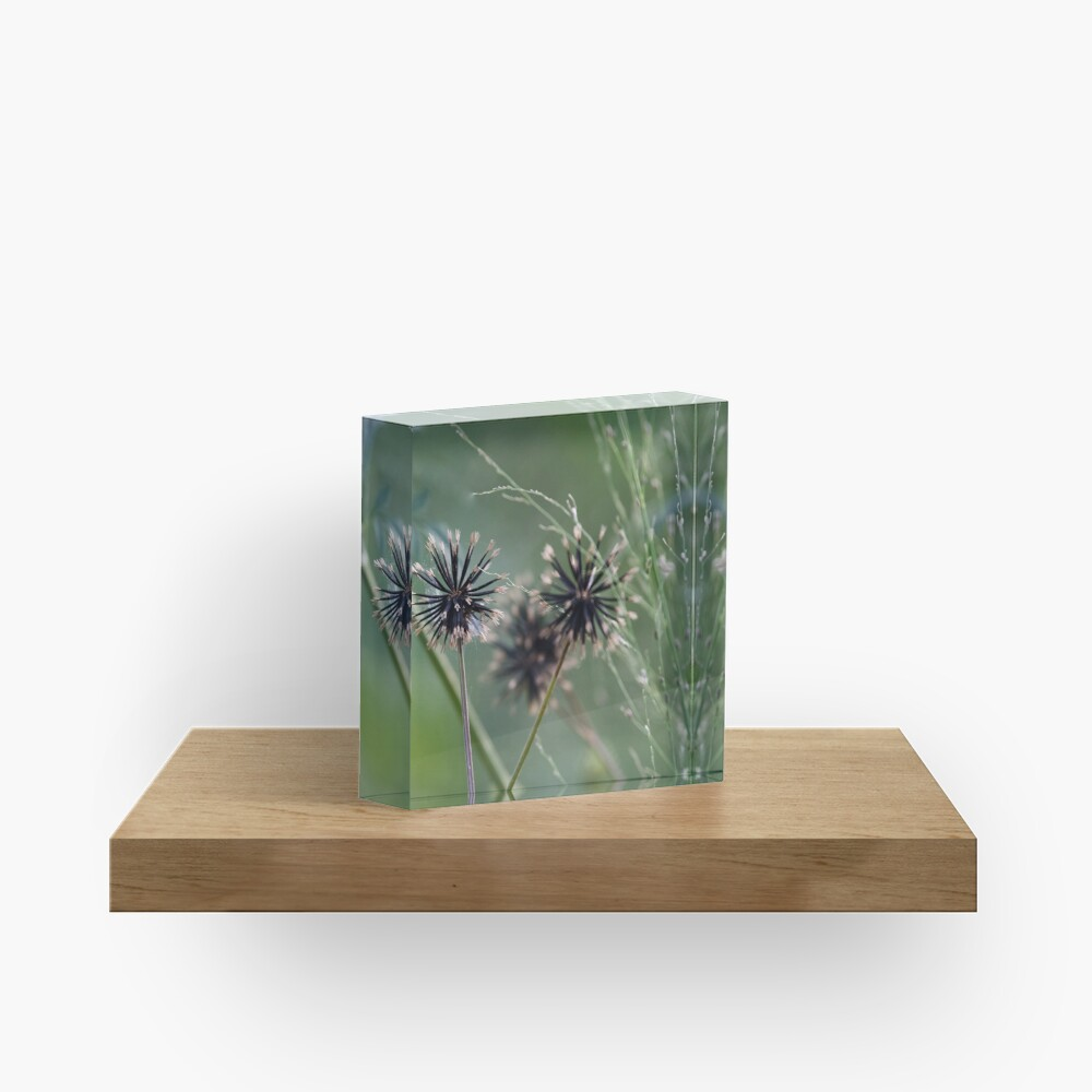 Black and green in nature  Acrylic Block