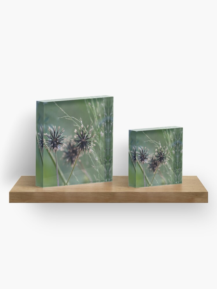Alternate view of Black and green in nature  Acrylic Block