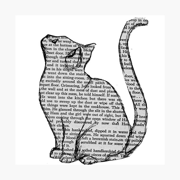 books and cats and books and cats Photographic Print