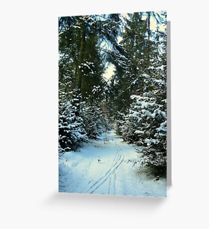 Forest and Snow Greeting Card